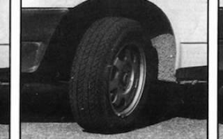 Как выбирать шины для авто советы