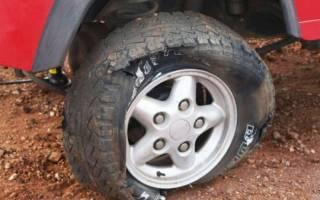 Как вылечить грыжу на шине